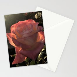 Sunset Roses Stationery Cards