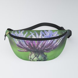 Funky Funky Fanny Pack