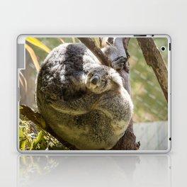 Mama and Baby Koala Bear Laptop & iPad Skin