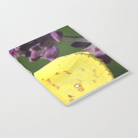 Orange Sulphur Butterfly Notebook
