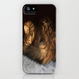 Curled iPhone Case