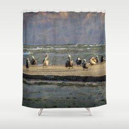 Mystic Magic Pelicans Shower Curtain