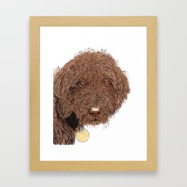 Chocolate Labradoodle Framed Art Print