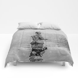 Alpine Snow Lake Nude Comforters