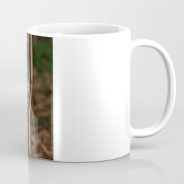 Lycogala epidendrum Coffee Mug