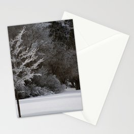Winter Magic Stationery Cards