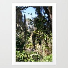 A piece of paradise  Art Print