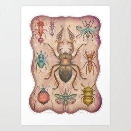 Entomology Tab. I Art Print