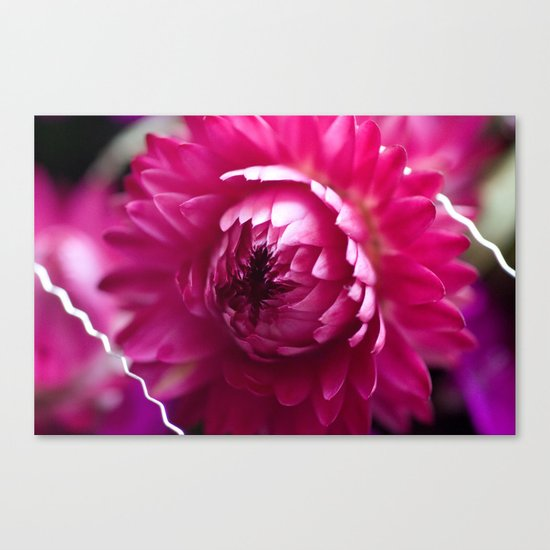 Hot Pink Flower #1 #art #society6 Canvas Print
