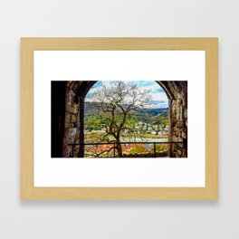 Window to the Tree of Life Framed Art Print