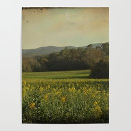 Once Upon a Time a Field of Flowers Poster