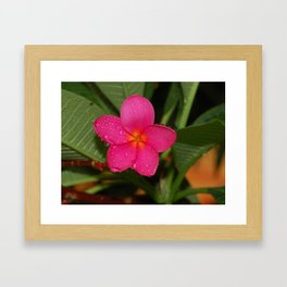September Close Framed Art Print