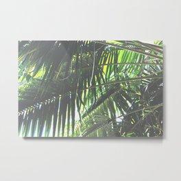 Faded Palm Jungle Metal Print