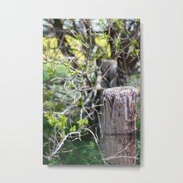 fence post Metal Print