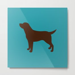 Labrador Retriever, Lab (Teal/Chocolate) Metal Print