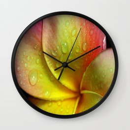 Morning Due in the Tropics Wall Clock