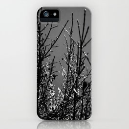 Icy Branches - Black and White iPhone Case