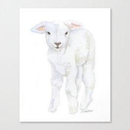 Lamb 2 Watercolor Canvas Print