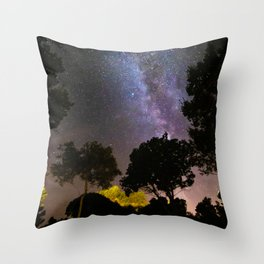 Trees landscape with milky way Throw Pillow