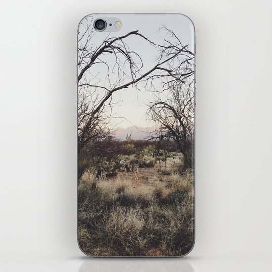 Coyote Canopy iPhone & iPod Skin