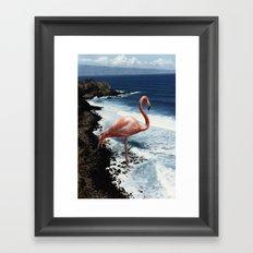 Flamingo Island Framed Art Print