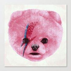 Boowie Canvas Print