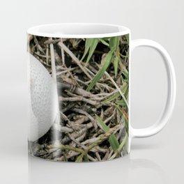 Fungus growing in Queensland Coffee Mug