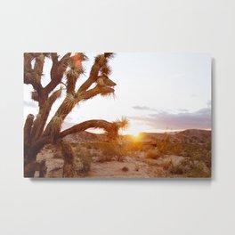 Joshua Tree at Sunrise  Metal Print