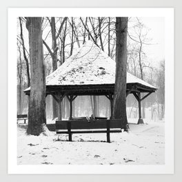 A lifetime love Art Print