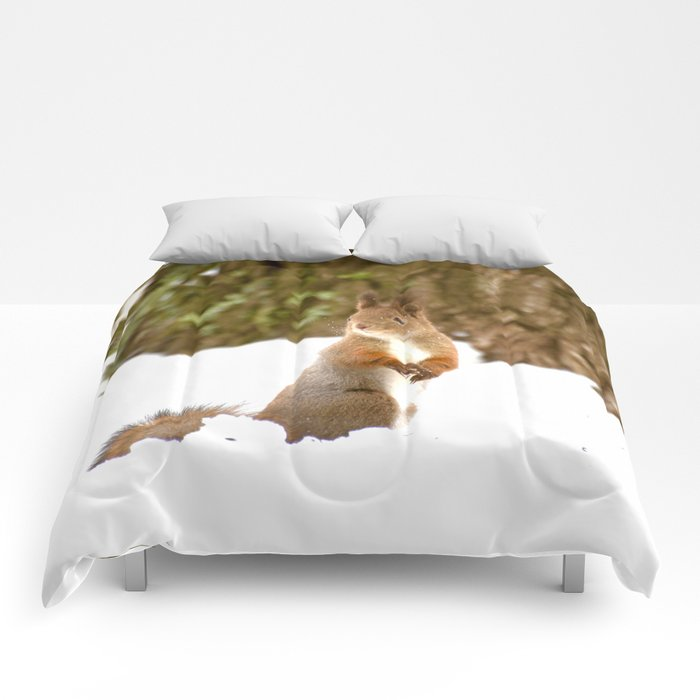 Cute Squirrel In The Forest Comforters