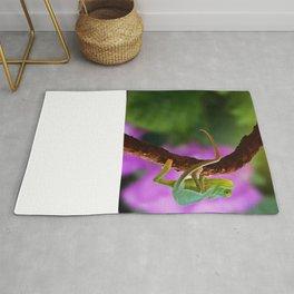 Floral Baby Chameleon Rug