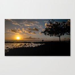 Sunset Tree Canvas Print