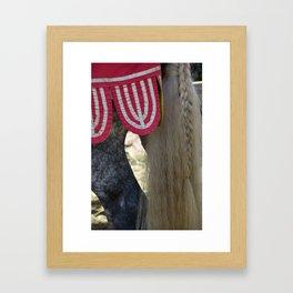 Jousting Horse - The Grey Framed Art Print