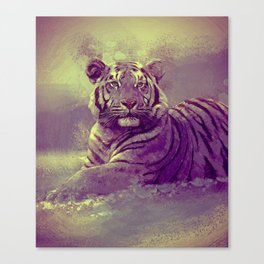 Tiger II Canvas Print