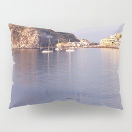swimming to s'ant angelo Pillow Sham