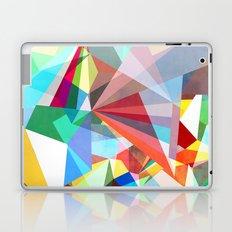 Colorflash 5 Laptop & iPad Skin