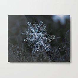 Snowflake of January 18 2013 Metal Print