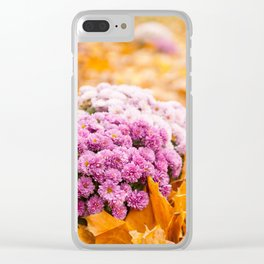 Flowering clump of pink Chrysanths Clear iPhone Case