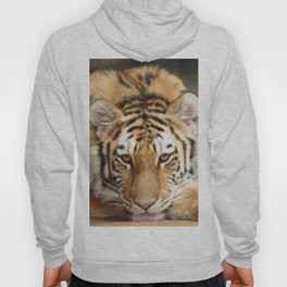 Tiger Eyes Hoody