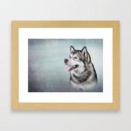 Drawing Dog Alaskan Malamute Framed Art Print
