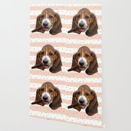 Basset Hound Dog Wallpaper