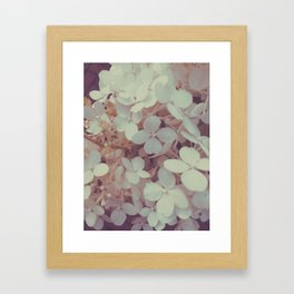 White Flower Bush Framed Art Print