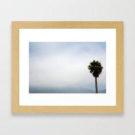 Malibu Palm Tree Framed Art Print