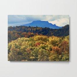 A Grand Blue Ridge View Metal Print