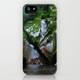 Peruvian Amazon III iPhone Case