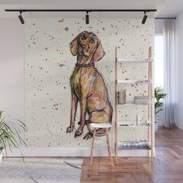 Hungarian Vizsla Dog Wall Mural