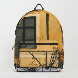 Brown & Yellow Budapest Facade Backpack