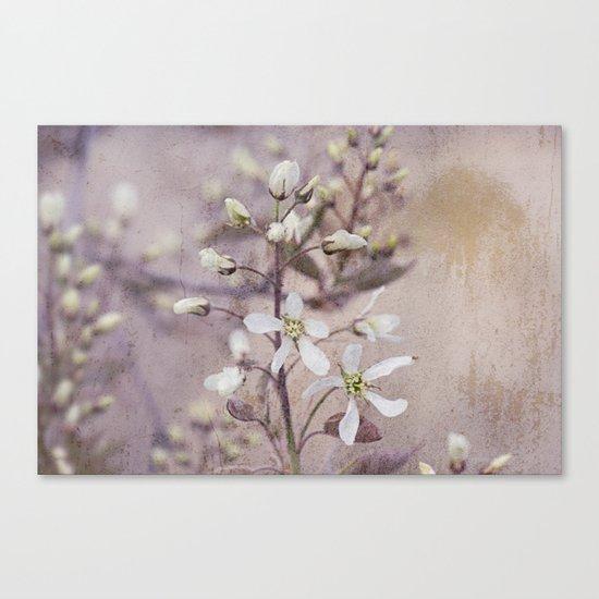 Vintage Spring flowers Canvas Print