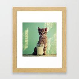 Kitteh haz milk Framed Art Print