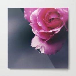 Raindrop on Petal/ Valentine's Day Card Metal Print